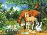 Idylle bij de vijver puzzel (100 st) / Ravensburger_