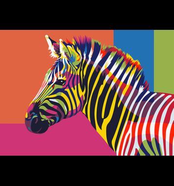 Schilderen op nummer Regenboog Zebra A4 / Artventura