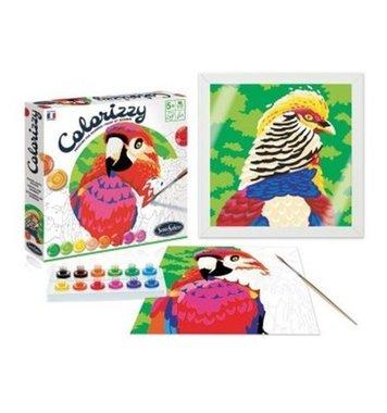 Schilderen op nummer Vogels Colorizzy / SentoSphère
