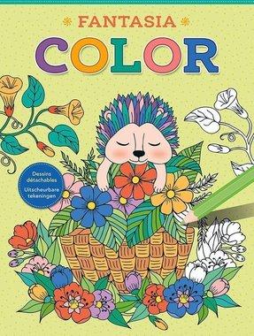 Kleurboek Color Fantasia / Deltas