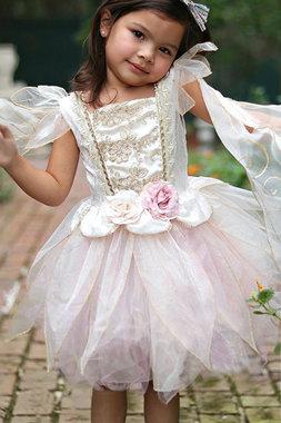 Golden Rose Fairy feeënjurk (5-6 jaar) / Great Pretenders