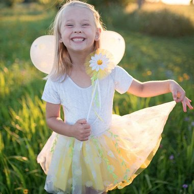 Daisy tule rok met vleugels (4-7 jaar) / Great Pretenders