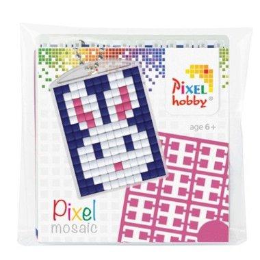Pixel Medaillon sleutelhanger Haas / Pixelhobby