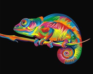 Schilderen op nummer Regenboog Kameleon / Artventura