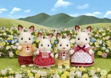 4150 Chocolate Rabbit Family